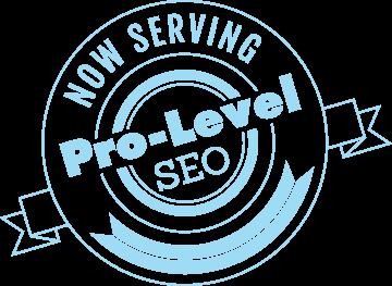 serving-professional-seo