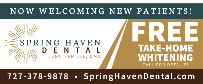 Lee - Spring Haven Dental Banner
